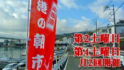 【小田原】月2で開催、港の朝市