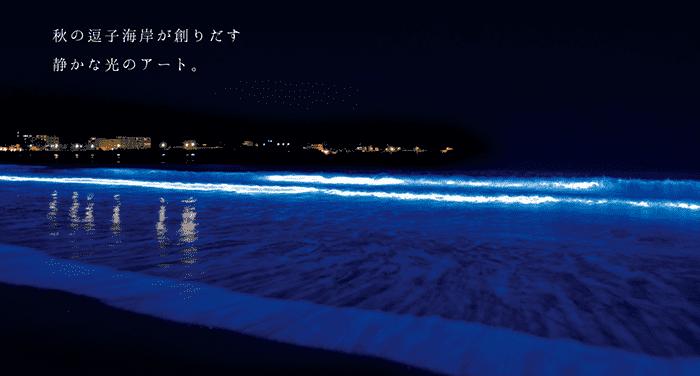 【逗子】NIGHT WAVE 光の波プロジェクト in ZUSHI