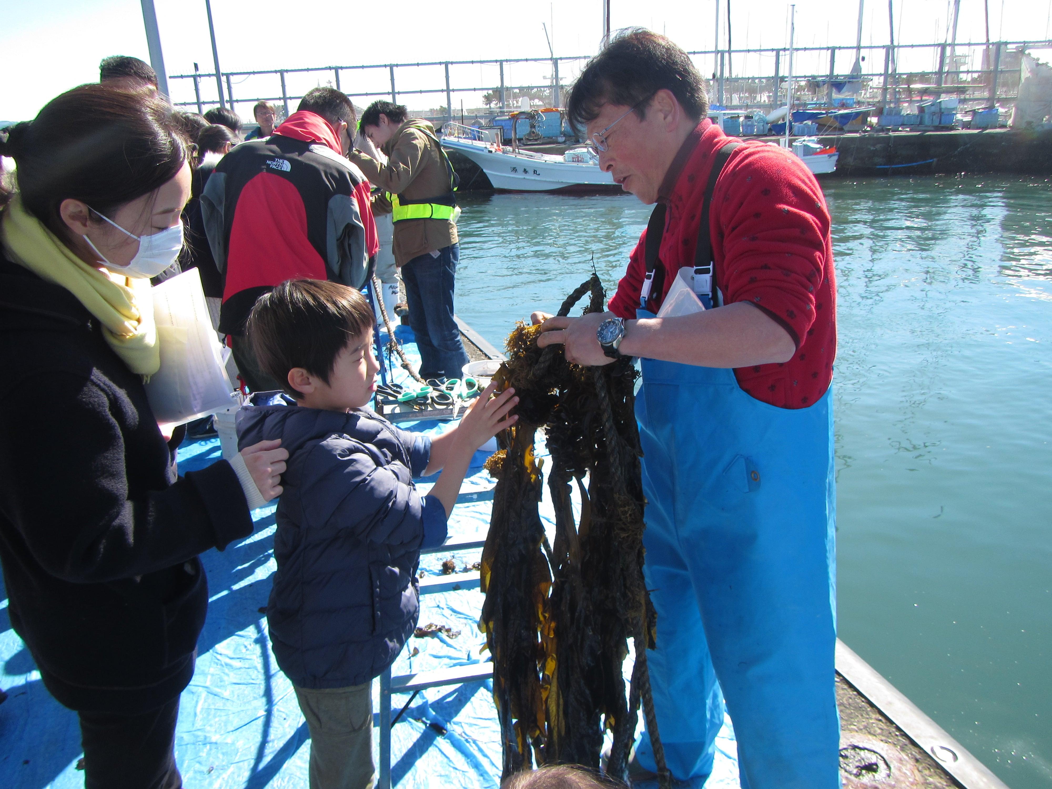 【藤沢】【先着順・事前申し込み制】海藻シンポジュウム ~養殖ワカメの刈り取り編~