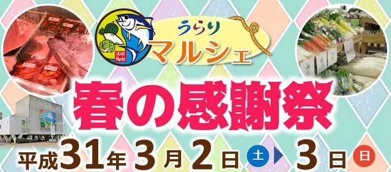 【三浦】うらりマルシェ 春の感謝祭