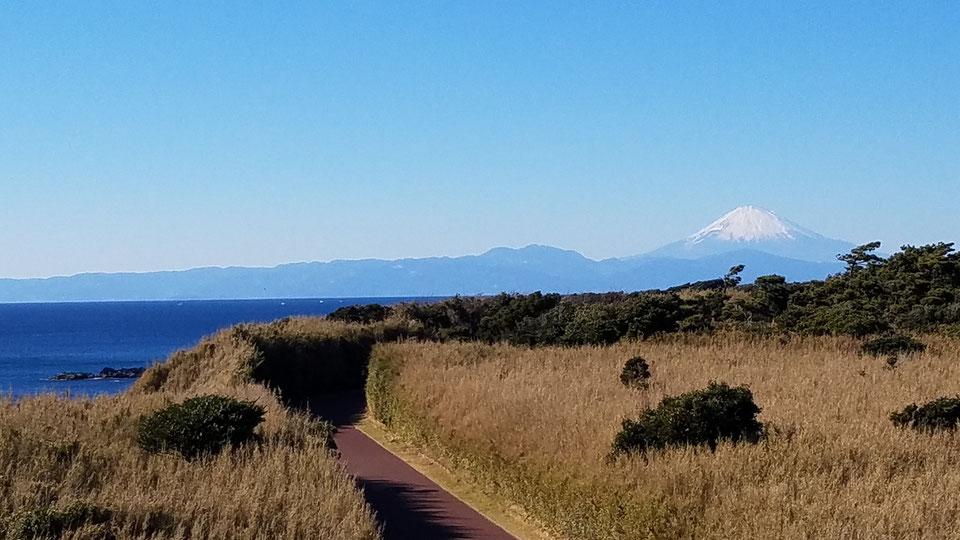 【三浦市】ミシュラン・ガイド2つ星の「城ケ島」で、「恋する灯台」をハイキングし、灯台の内部を見学しよう!