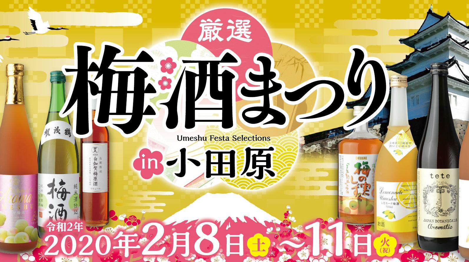 【小田原市】梅酒まつり